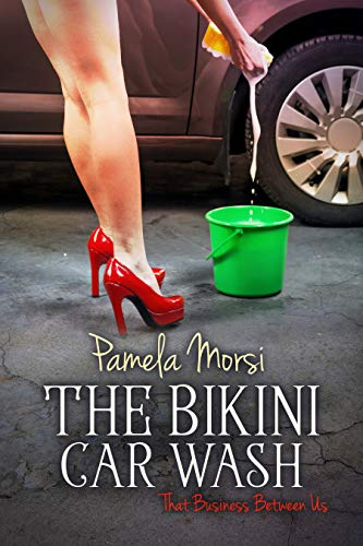 Bikini Carwash (That Business Between Us Book 6)