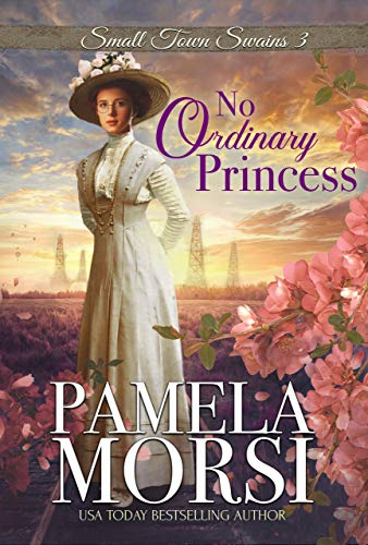 No Ordinary Princess (Small Town Swains Book 3)